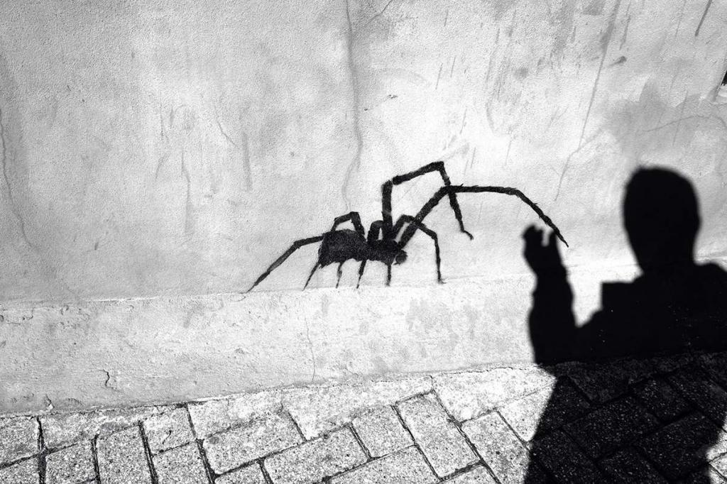 Страх пауков рисунок